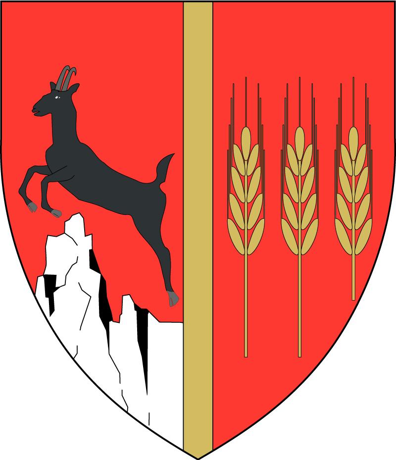 Consiliul Județean Neamț
